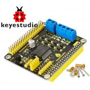 HAT L298P Motor Driver for...