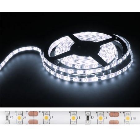 Fita 300 LEDs SMD 3528 Flexivel Branco Frio 5 Mts 12V